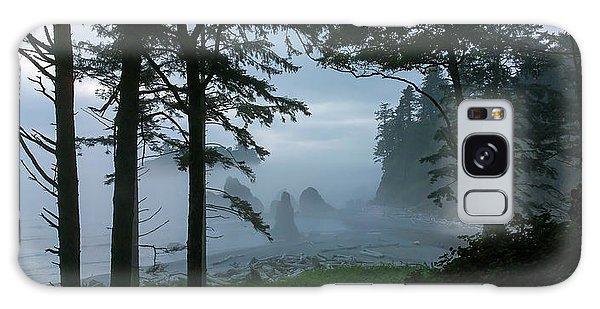 Ruby Beach II Washington State Galaxy Case by Greg Reed