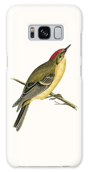 Song Bird Galaxy Case - Ruby Crowned Kinglet by English School