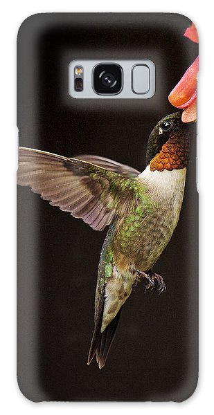 Galaxy Case featuring the photograph Ruby Male by Angel Cher