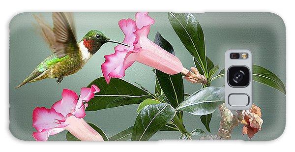 Ruby-throated Hummingbird And Desert Rose Galaxy Case