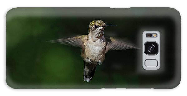 Ruby Throated Hummingbird Galaxy Case