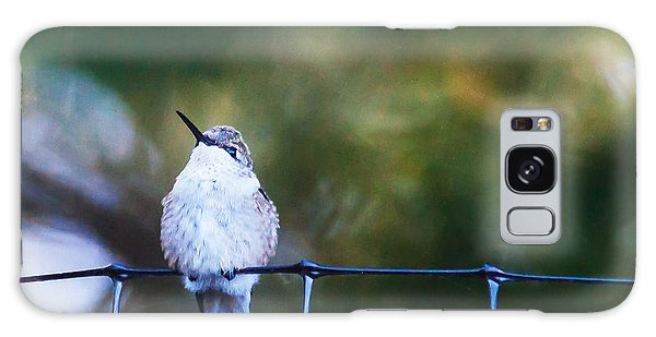 Ruby-throated Hummingbird  Staying Warm Galaxy Case by Edward Peterson