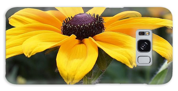Rudbeckia Bloom Up Close Galaxy Case by Bruce Bley