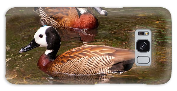 White-faced Whistling Duck Galaxy Case by Chris Flees