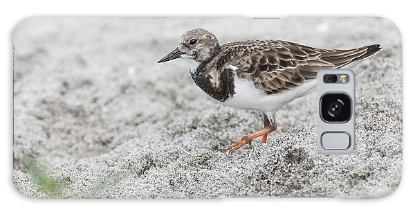 Ruddy Turnstone Foraging On The Beach Galaxy Case