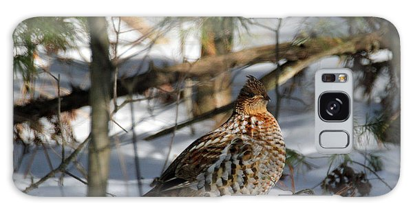 Ruffed Grouse In Winter Galaxy Case by Brook Burling