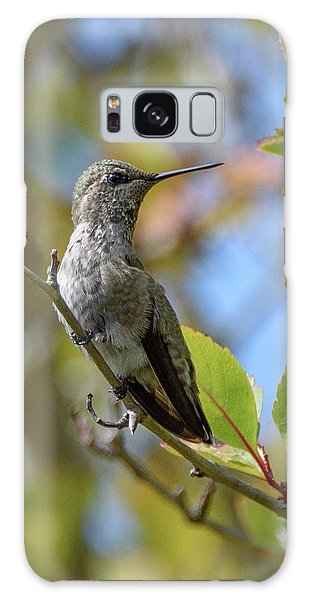Rufous Hummingbird Galaxy Case by Keith Boone