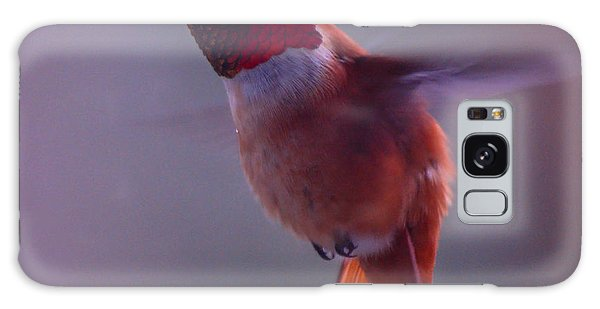 Rufus Hummingbird Galaxy Case