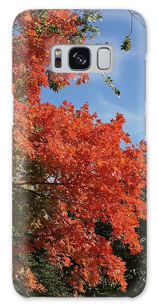 Russet Foliage Galaxy Case