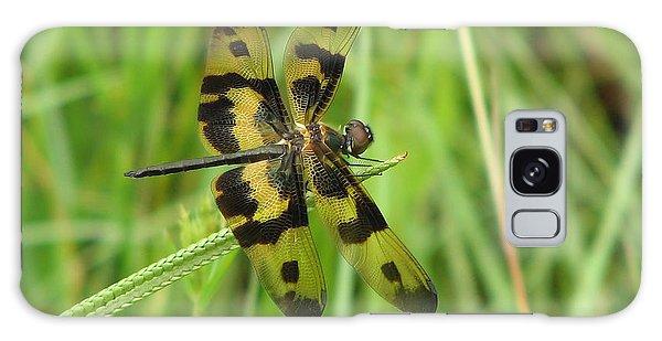 Ryothemis Dragonfly Galaxy Case