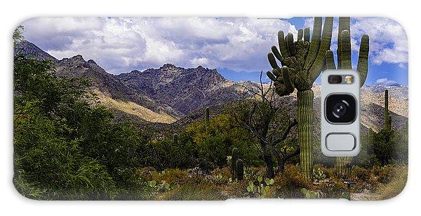 Sabino Canyon No4 Galaxy Case