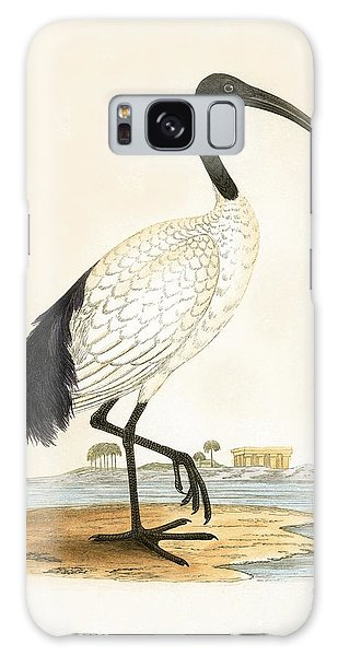 Ibis Galaxy S8 Case - Sacred Ibis by English School