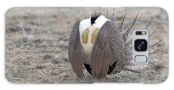 Sage Grouse Galaxy Case