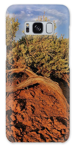 Sagebrush At Sunset Galaxy Case