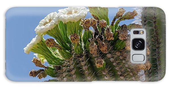 Saguaro Blooms Galaxy Case