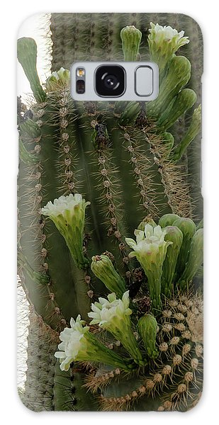 Saguaro Buds And Blooms Galaxy Case