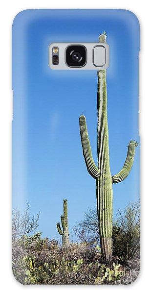 Saguaro National Park Arizona Galaxy Case