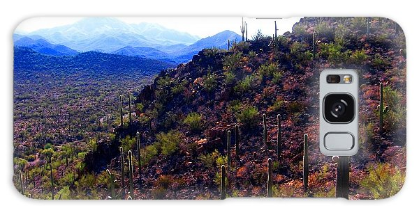 Galaxy Case featuring the photograph Saguaro National Park Winter 2010 by Michelle Dallocchio