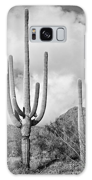 Saguaro Galaxy Case