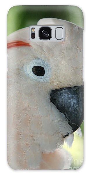 Salmon Crested Moluccan Cockatoo Galaxy Case