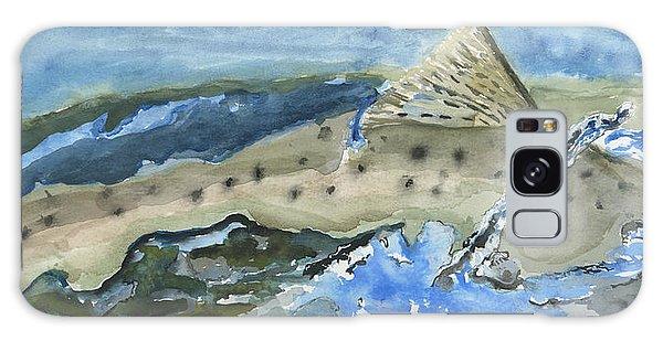 Salmon Surface Galaxy Case