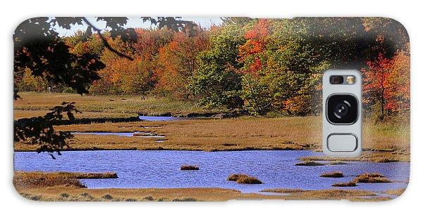 Salt Marsh River Galaxy Case