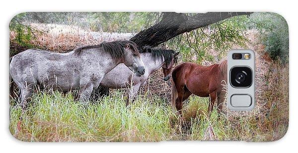 Salt River Wild Horses Galaxy Case