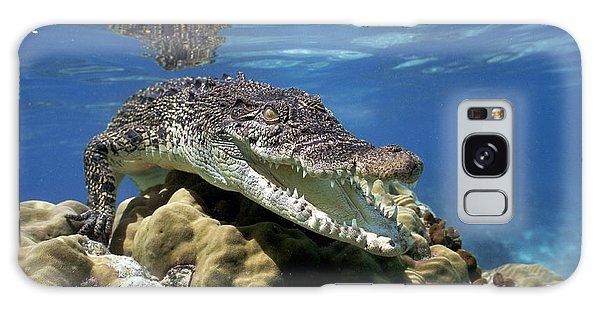 Saltwater Crocodile Smile Galaxy Case