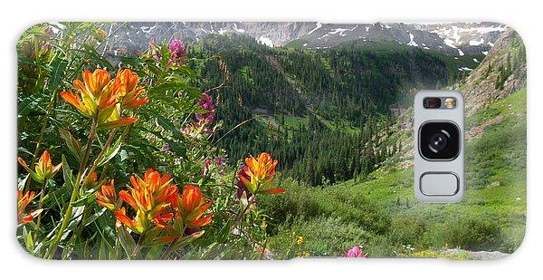 San Juans Indian Paintbrush Landscape Galaxy Case
