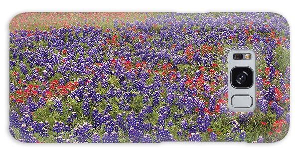 Galaxy Case featuring the photograph Sand Bluebonnet And Paintbrush by Tim Fitzharris