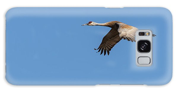 Sandhill Crane 2017-1 Galaxy Case by Thomas Young
