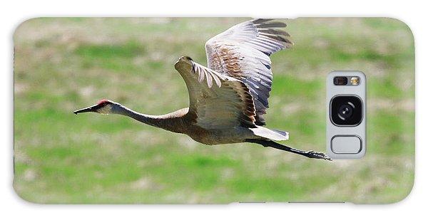 Sandhill Crane In Flight Galaxy Case
