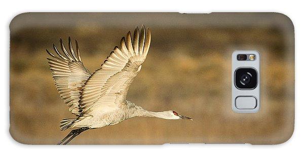 Sandhill Crane Galaxy Case