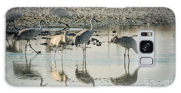 Sandhill Crane Reflections Galaxy Case