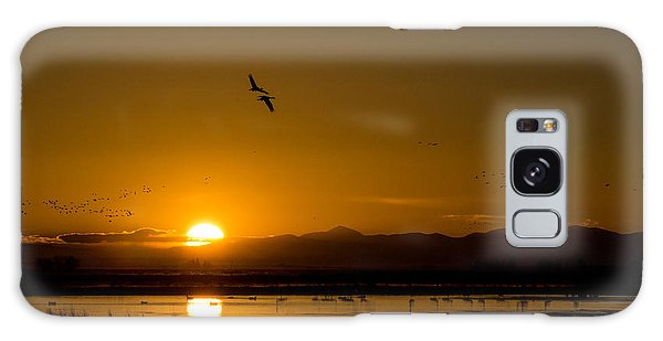 Sandhill Crane Sunrise Galaxy Case