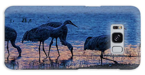 Sandhill Cranes At Twilight Galaxy Case
