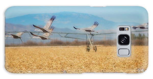 Sandhill Cranes In Flight Galaxy Case by Donna Greene