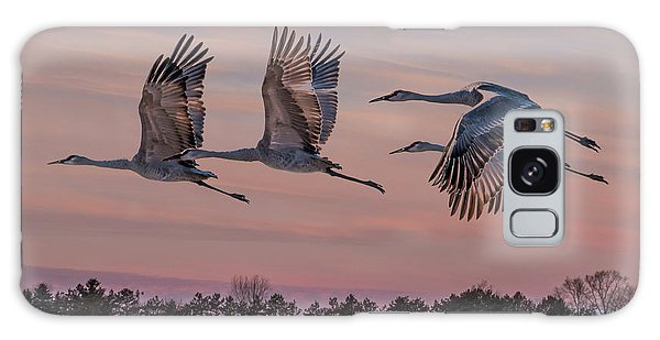 Sandhill Cranes In Flight Galaxy Case by Patti Deters
