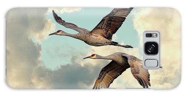 Sandhill Cranes In Flight Galaxy Case