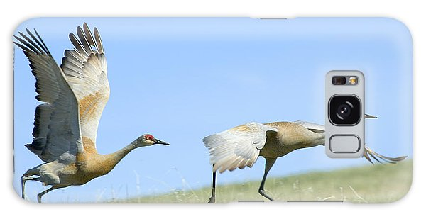 Sandhill Cranes Taking Flight Galaxy Case