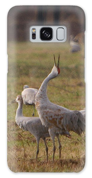 Sandhill Delight Galaxy Case by Shari Jardina