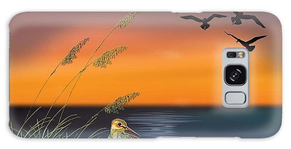 Sandpiper For Angel Galaxy Case