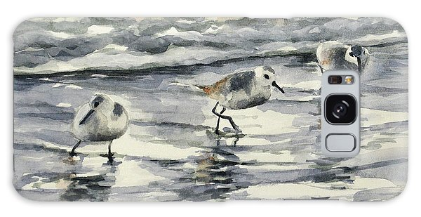 Sandpipers 3  12-11-17 Galaxy Case