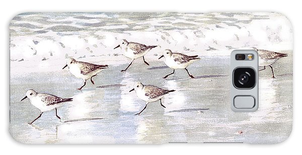 Sandpipers On Siesta Key Galaxy Case