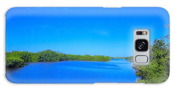 Sanibel Island, Florida Galaxy Case