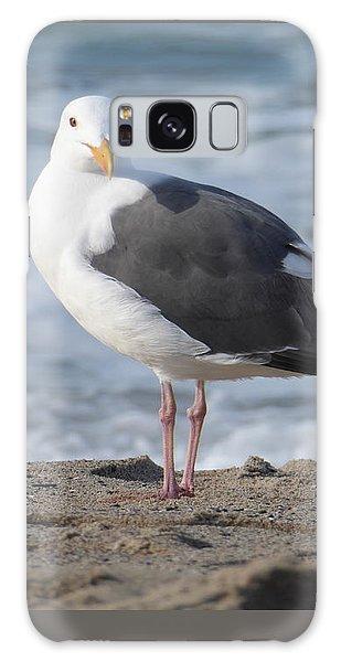 Santa Monica Seagull Galaxy Case by Margaret Brooks