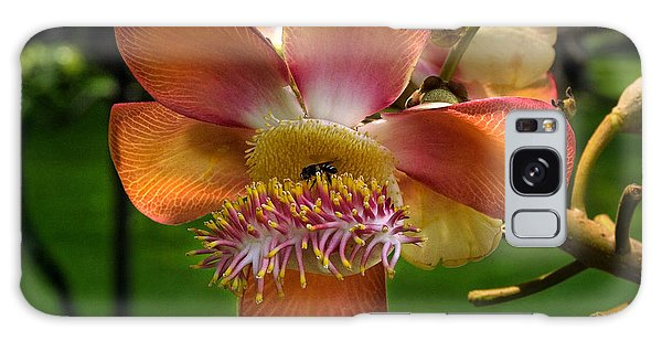 Sara Tree Flower Dthb104 Galaxy Case by Gerry Gantt