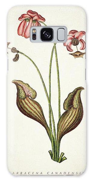 Botanical Garden Galaxy Case - Sarracena Canadensis Botanical Print by Aged Pixel