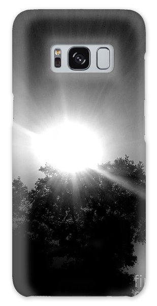 Galaxy Case - Saturday Sunshine On A Charleston Morning by Lisa Marie Towne
