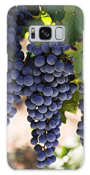 Sauvignon Grapes Galaxy Case